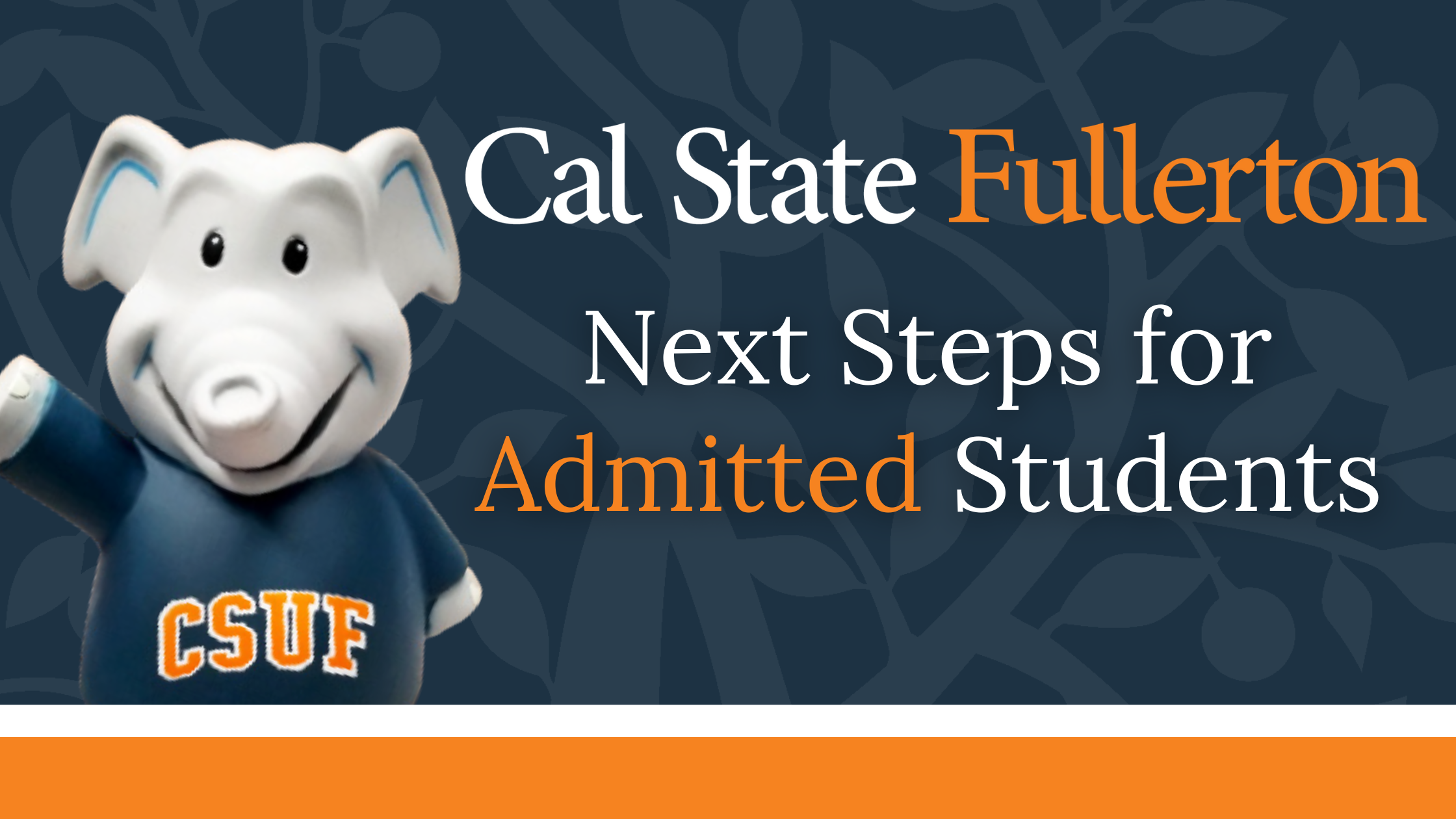 Next Steps for Admitted Students